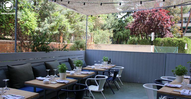 Nitty gritty y su preciosa terraza tenemos que ir for Restaurantes con terraza madrid